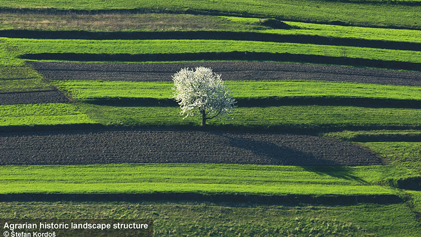 Agrarian-historic-landscape-structure.jpg