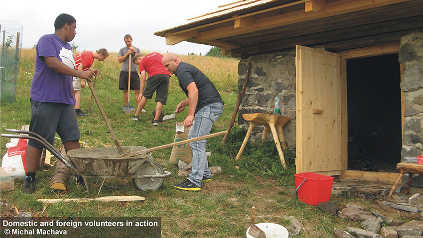 Domestic-and-foreign-volunteers-in-action.jpg