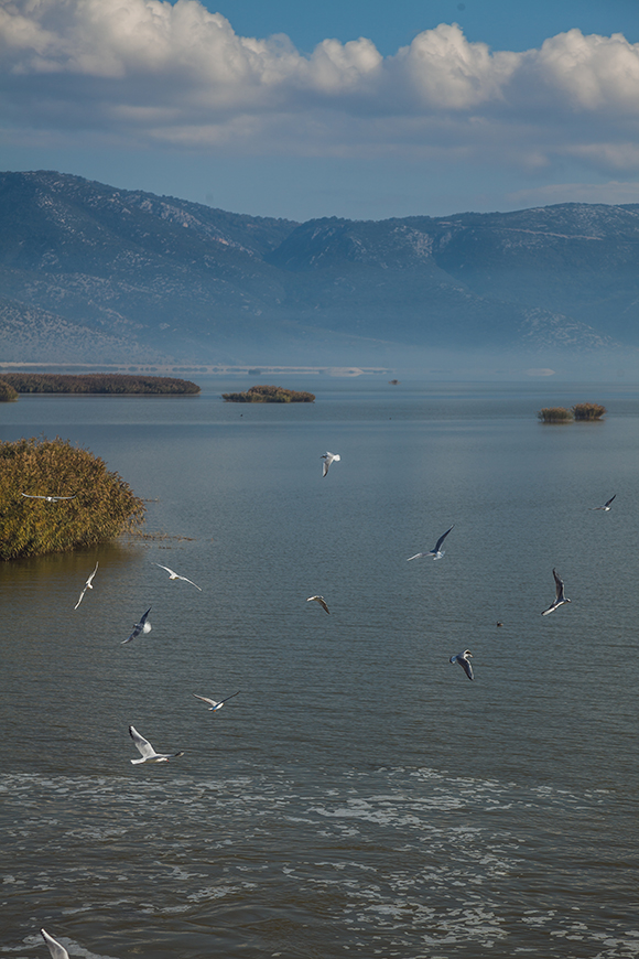 GREECE-Lake Karla-2.jpg