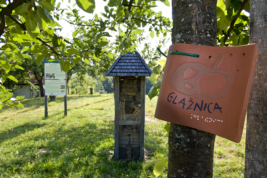 SLOVENIA - Meadow orchards, Kozje _ Photo (3)_jpg.jpg
