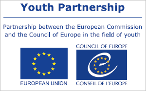 Link to Youth Partnership website