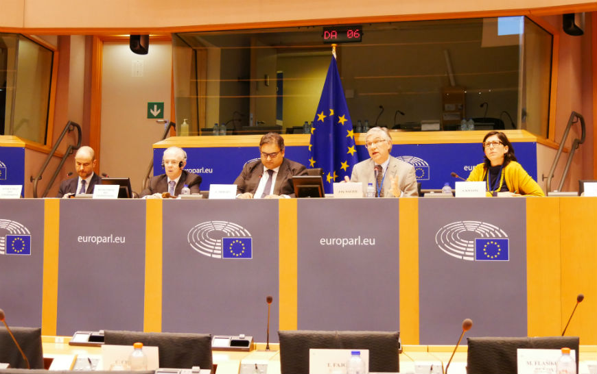 Participation in the LIBE Committee meeting