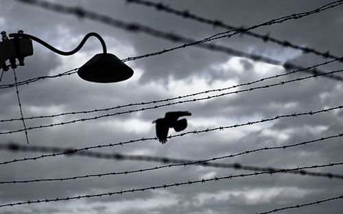 Europe still needs to draw lessons from the Holocaust