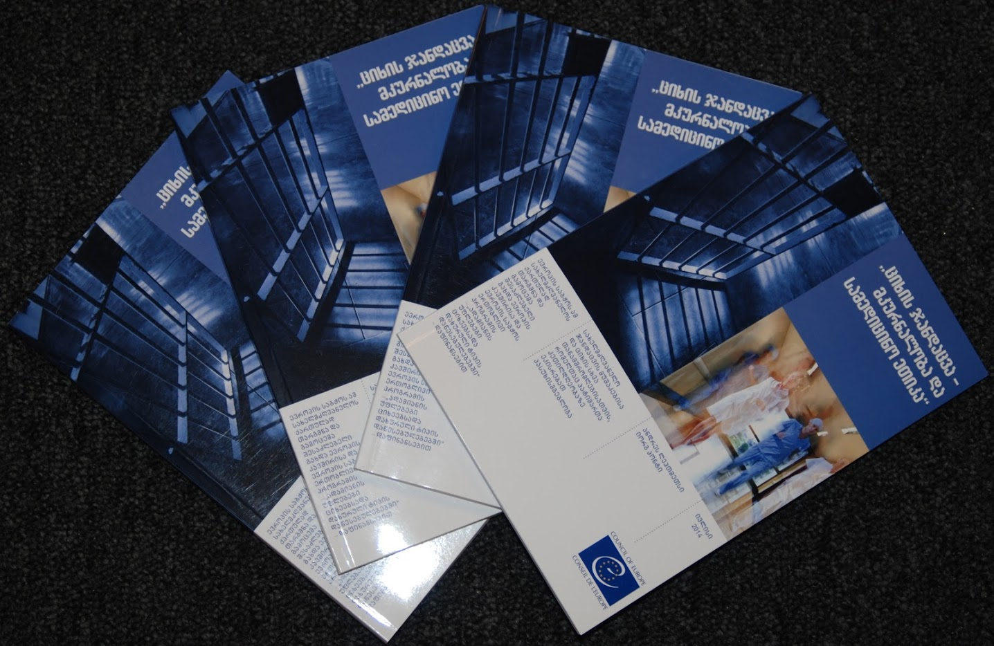 "500 copies of a Council of Europe publication, Manual on ""Prison Healthcare and Medical Ethics"" were translated and published"