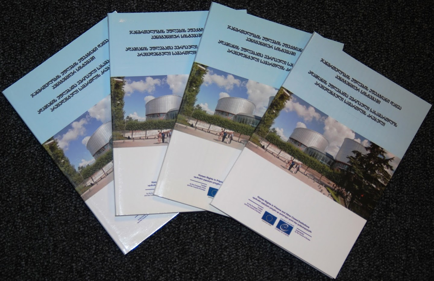 Compilation of summaries of the case law of the ECtHR on prison healthcare related issues was developed in Georgian and printed in 500 copies