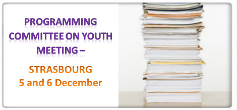 Programming Committee on Youth Meeting