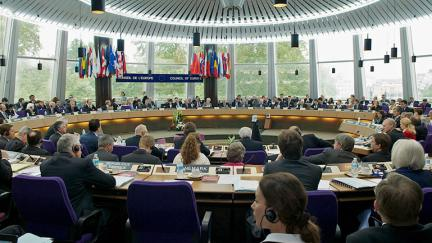 Committee of Ministers: decisions on the execution of European Court of Human Rights judgments
