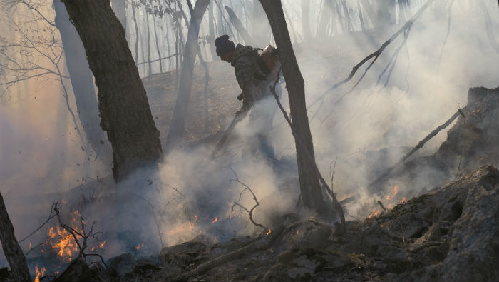 Addressing aerial wildfire suppression in Eastern European countries